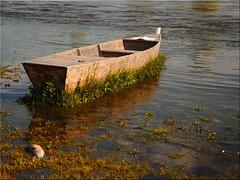 Silence  on the Vltava (Ostseetroll) Tags: cze geo:lat=5011475110 geo:lon=1441892383 geotagged prag praha7troja troja tschechien prague moldau vitava boot boat