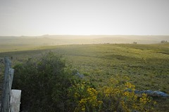 _DSC0363 (Chips Adventure Fotos) Tags: mountainbike mtb uruguay villaserrana chipsadventure merrell cube lavalleja trekking trail