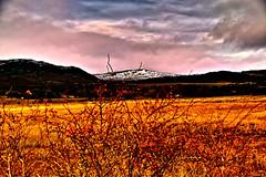 Berries by thr roadside (Fr Paul Hackett) Tags: bush winter mountain clouds marsh