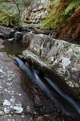 Kanangra-Boyd National Park (Caleb McElrea) Tags: borderfx kanangraboyd kanangraboydnationalpark bluemountains worldheritagearea unesco greatdividingrange newsouthwales nsw australia nature wilderness