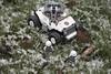 Snow Patrol (LegoInTheWild) Tags: moc afol lego sidan brickarms hydra winter snow minifigure minifigs