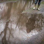 2017-12-13 secret wood (18)puddle reflected wellies thumbnail