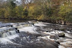 Redmire force in autumn, River Ure, Wensleydale, Yorkshire Dales National Park. UK (Wend's photography) Tags: atmosphere autumn autumnal dales england english gb moors northyorkshire northyorks national park outdoor rural river scenery trees uk ure waterscape wendsphotography wensleydale wwwwendsphotographycouk yorkshire yorkshiredales redmire force waterfall