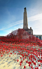 The Wave, Plymouth Hoe (vertical panorama) (jamiegaquinn) Tags: poppies thewave plymouth memorial war remembrance hoe plymouthhoe thehoe