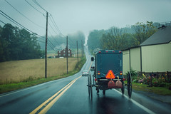 wet buggy (Jen MacNeill) Tags: lancaster pa pennsylvania horse buggy amish country wet rain road