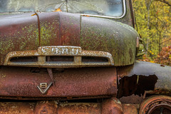 V8 Ford...... (Kevin Povenz Thanks for the 3,700,000 views) Tags: 2017 october kevinpovenz westmichigan michigan ottawa ottawacounty truck rust old field ford v8 hood auto canon7dmarkii
