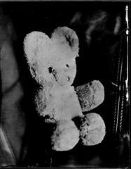 Collodion humide doudou virginie renck - ambrotype, collodion, collodion humide, humide, scann.jpg (Meditant) Tags: collodion scann ambrotype humide collodionhumide