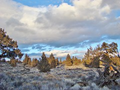 November in The Central Oregon Badlands (dinannee) Tags: