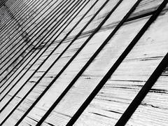 SERRAtaCORRIGE (SilViolence) Tags: minimal minimale minimalism minimalismo abstract astratto astrattismo abstrakt abstrait urban urbex urbano urbanexploration lines bw biancoenero blackwhite p7000 nikon coolpixp7000 varese plexiglass va campodeifiori serra plastic plastica lombardia italy italia up copertura linee detail dettaglio particolare