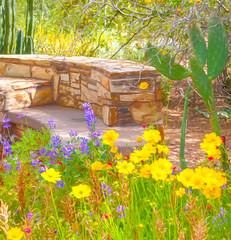 Flower Garden Digital Watercolor (randyherring) Tags: arizona phoenixdesertbotanicalgarden bloom desertplants kitlens wildflower phoenix az