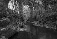 Little and Large.. (CamraMan.) Tags: bridge viaduct monochrome blackandwhite rivergelt middlegeltbridge canon6d canon1740mmlusm manfrotto ©davidliddle ©camraman