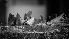 shards (steve: they can't all be zingers!!! (primus)) Tags: sonya7r smcpentaxm50mmf17 primelens prime primepentaxlens monochrome bw blackwhite blackandwhite lightroom lightroom6 taiwan taichungtaiwan taichung