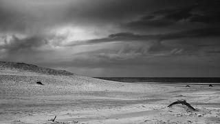 Cose di duna