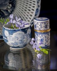 Blues (Betweendunes) Tags: blue ceramic stilllife macro plumbago
