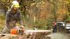 gardening in highland Perthshire! (grahamrobb888) Tags: nikon nikond800 nikkor nikkor20mmf18 homegarden garden trees treefelling perthshire tighnabeithe home woods birnamwood birnam industry noise