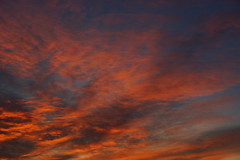 _DSC6800 (wdeck) Tags: morgenrot