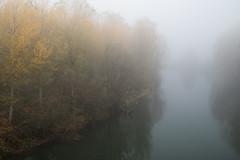 Fog on the River (drugodragodiego) Tags: oglio monticellidoglio verolavecchia provinciadibrescia lombardia paesaggio landscape nebbia fog water river fiume pentax pentaxk1 k1 pentaxdfa2470mmf28 hdpentaxdfa2470mmf28edsdmwr pentaxiani autumn