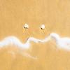 Moustache.jpg (Klaus Ressmann) Tags: klaus ressmann omd em1 abstract autumn beach foleron sand design flcabsnat foam minimal pebble squareformat klausressmann omdem1