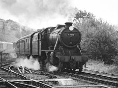 Stanier 8F 2-8-0 - 48305 (dgh2222) Tags: steam locomotive preserved railway 8f 280 48305 staffordshire churnet valley
