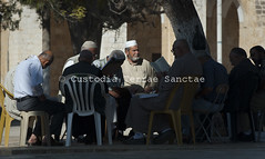 PESC_121004_8708 (Custody of the Holy Land - Photo Service (CPS)) Tags: holyland jerusalem muslims pescali piergiorgiopescali templemount terrasanta terresainte islam muslim people