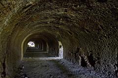(Marina-Inamar) Tags: tunel ladrillos textura hueco altamira buenosaires argentina profundo fabrica