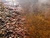Rock texture, iron-stained (marguerite-simone) Tags: nature minnesota textures rock lake iron orange rough bumpy wet water