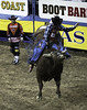 0246937447-95-Cowboy Bull Riding at the 2017 National Finals Rodeo-9 (Jim There's things half in shadow and in light) Tags: 2017 america american lasvegas nfr nationalfinals nevada rodeo southwest thomasandmack usa unitedstates action animal cowboy december sports western bullriding bucking roughstock