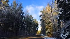 Winter Splendor (Katy on the Tundra) Tags: