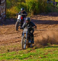 Harley Duel (John Kocijanski) Tags: harleydavidson motorcycle dirtbike vehicles sport race hillclimb people canon70300mmllens canon7d