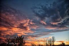 November 1, 2017 - Stunning sunset clouds. (Michelle Jones)