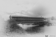 171000GASPBW-041 Pont couvert (clamato39) Tags: pontcouvert pont bridge wood ciel sky monochrome bw blackandwhite noiretblanc matapédia provincedequébec québec canada gaspésie