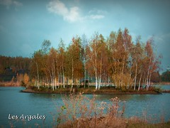 2017-11-12 Rieulay (27)island f (april-mo) Tags: rieulay lesargales naturepark parcnaturelduhainaut parctransfrontalierduhainaut autumn autumncolours autumncolors island lake reflection trees nord france franceimage autumnleaves