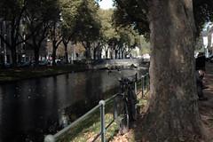 autumn light@Königsallee, Düsseldorf 6 (Amselchen) Tags: bicycle lightandshadow light shadow season autumn fall bokeh blur dof depthoffield fujifilm fujinon fujifilmxseries xt2 fujifilmxt2 xf35mmf14r