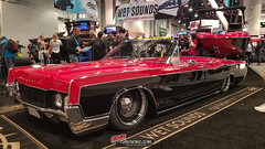 Sema Day three -313