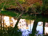 Reflexo. (ashera08) Tags: ashera sedrul river naturezanature leiria portugal olhares outras friends fotografia paintings fhotos