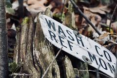 DSC00375 (baylersmith) Tags: minnesota state park nature statepark hunting dog fall