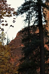 IMG_5745 (schnabelsayegh) Tags: redrock sedona arizona hiking views landscape photography rivers mountains trails leafs fall october screensavers