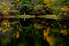 Autumn Scene (HarQ Photography) Tags: fujifilm fujifilmxseries xt2 xf50140mmf28rlmoiswr landscape tree japan nara pond