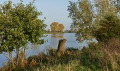 An der Maas (antje whv) Tags: maas fluss flusslandschaft river riverlandscape holland netherlands herbst autumn fall nordbrabant