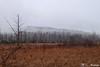 171122-10 Par un matin brumeux! (clamato39) Tags: lacdelage étang marais marsh brume fog nature ciel sky provincedequébec québec canada