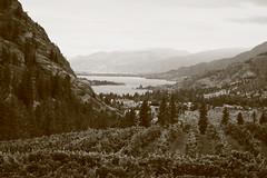 from see ya later winery in the okanagan (hmong135) Tags: okanaganlake seeyalaterwinery bc okanaganfalls vineyard