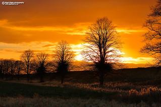 Fen Sunset near Welney Cambridgeshire