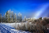 THE WILD THINNGS (Aspenbreeze) Tags: fog fogbow winter snow frost hoarfrost ice frostedtrees nature cold december tetons bevzuerlein aspenbreeze moonandbackphotography