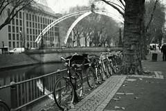 bike@Kö, Düsseldorf 34 (Amselchen) Tags: mono bicycle kö düsseldorf germany season winter bokeh blur dof depthoffield blackandwhite city bridge trees light illumination sony a7rii alpha7rm2 zeiss carlzeiss sonnart1855 sonnar5518za fe55mmf18za sonyilce7rm2 water
