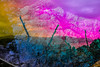 20171030-105 (sulamith.sallmann) Tags: landschaft blur coast côte effect effekt filter folie folientechnik italia italien italy küste landscape messina natur nature sizilien stein stone tindari tyndaris unscharf it sulamithsallmann