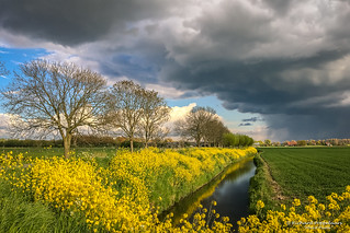 2017-04 Typical Dutch polders and weather in April - Zwartewaal/NL