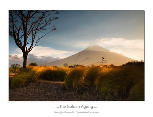 ... the Golden Agung ...
