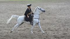 "73 years old Hungarian ""csikós"" (The kun) Tags: nikon nikond7100 sigma70200mmf28exdgapooshsm sigma hungary hungarian hungaricum horse werner kurultaj rider csikós race horserace bugac"
