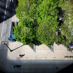 Summer Park (michael.veltman) Tags: chicago park illinois inland steel building looking down