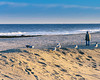 asbury pork12 (kc_tinari) Tags: street streetphotography offseason beach shore asbury asburypark newjersey nj newjerseyshore